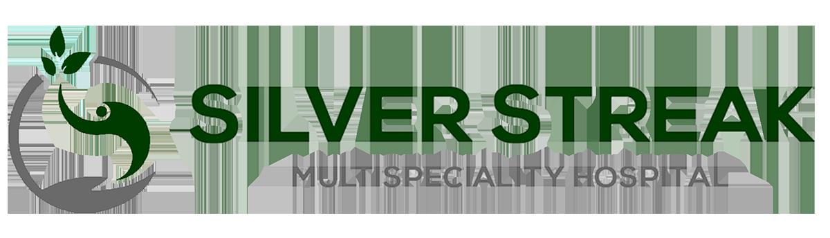 Logo Clients Silver Streak